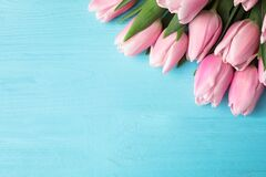 Free Beautiful Pink Spring Tulips On Light Blue Wooden Background, Flat Lay. Space For Text Royalty Free Stock Photo - 170802495