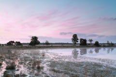 Beautiful pink sunrise on swamp Royalty Free Stock Image