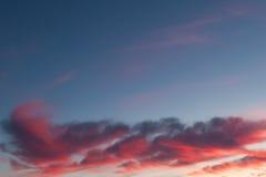 Beautiful pink sunset clouds Royalty Free Stock Photo
