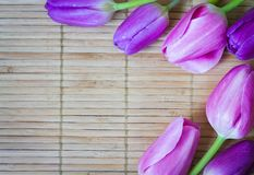 Beautiful pink tulip on wood, bamboo mat Royalty Free Stock Image