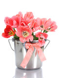 Beautiful pink tulips in bucket Stock Photography