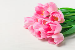 Beautiful Pink tulips flowers on white wooden background. Royalty Free Stock Photography