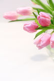 Beautiful pink tulips in the vase Royalty Free Stock Image