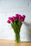 Beautiful pink tulips in a vase. Beautiful pink tulips on white background Stock Photos