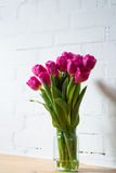 Beautiful pink tulips in a vase. Beautiful pink tulips on white background Royalty Free Stock Image