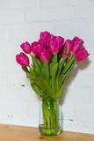 Beautiful pink tulips in a vase. Beautiful pink tulips on white background Royalty Free Stock Photo