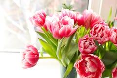 Beautiful pink tulips on windowsill background Stock Photography