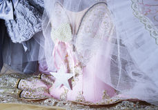 beautiful pink wardrobe closet outfit style fashion dance ballet fairy Stock Photography