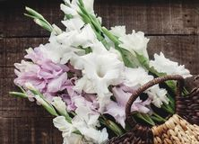 Beautiful pink and white gladioluses in stylish wicker basket on Stock Photo