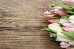 Beautiful pink and white tulips on wood Royalty Free Stock Image