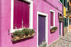 Beautiful pink windows with  flowers in Burano island (Venice, Italy) Royalty Free Stock Images
