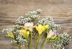 Beautiful pink and yellow freesia flowers on wooden background Royalty Free Stock Photos