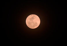 Beautiful pinky moon Royalty Free Stock Images