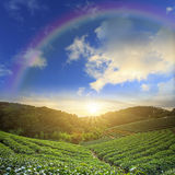 Beautiful place with nice rainbow Royalty Free Stock Photo