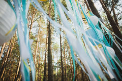 Beautiful place for outside wedding ceremony in wood Royalty Free Stock Photo
