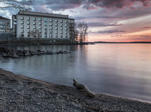 Beautiful place to live. In Finland Koukkuniemi, Tampere Royalty Free Stock Image