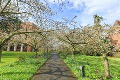 Beautiful places around the famous Cambridge University Stock Photos