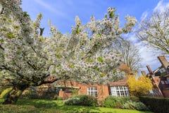 Beautiful places around the famous Cambridge University Stock Image