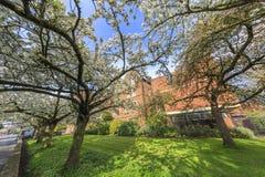 Beautiful places around the famous Cambridge University Stock Photo