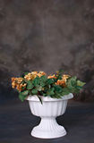 Beautiful Planter with Flowers Digital Prop. Knockout the background and use as a digital prop or put child inside stock photos