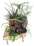 Beautiful plants arrangement. A beautiful arrangement of plants Royalty Free Stock Photography