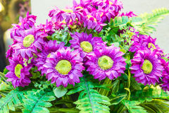 Beautiful plastic flowers. royalty free stock photography