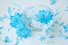 Beautiful plate with blue flowers for Spa Royalty Free Stock Photos