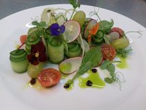 Beautiful  plating for summer salad. Very nice plating for summer salad with cucumber rolls and micro greens royalty free stock image