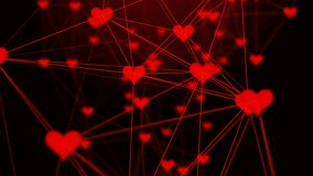 Beautiful plexus of hearts. Valentine`s Day abstract background with hearts. Love. 4k Loop animation stock video