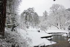 Beautiful plot in the English Park in winter Stock Images