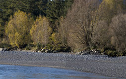 Beautiful Poerua river, southern island New Zealand Royalty Free Stock Images
