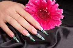 Beautiful polished nails. Female hands displaying beautiful polished nails Stock Photography