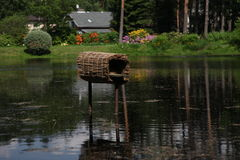 Beautiful pond, duck house  Stock Image