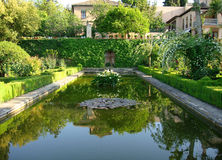 Pond. A beautiful pond in a garden stock images