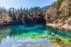 Beautiful pond in Jiuzhaigou national park Stock Images