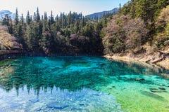 Beautiful pond in Jiuzhaigou national park Stock Photos