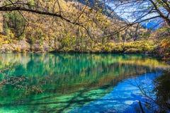 Beautiful pond in Jiuzhaigou national park Stock Photography