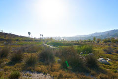 Beautiful pond in Malibu at sunset. The hills in the background Royalty Free Stock Photos