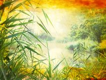 Beautiful pond in the park, grungy stock image
