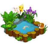 Beautiful pond with snail, fish and flowers Royalty Free Stock Photography