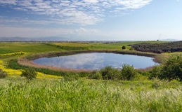 Beautiful pond in spring, Thessaly, Greece stock photography