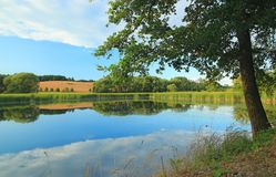 A beautiful pond in summer day in Bohemia, Czech Republic Stock Image