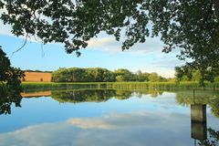 A beautiful pond in summer day in Bohemia, Czech Republic Stock Images