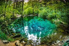 Beautiful pond in the woods, forest lake Ochiul Beiului famous by it`s unbelievable color, Caras Severin county. Beusnita National Park, Romania Stock Photography