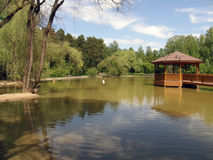 Beautiful pond in the zoo of Novosibirsk. Russia stock photos