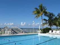 Beautiful Pool by the Beach. A fantastic pool with palm trees next to the ocean in the Bahamas Stock Photos