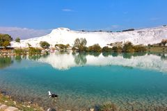 The beautiful pools in Pamukkale Turkey Royalty Free Stock Image