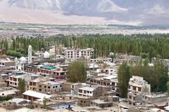 Beautiful poplar tree and houses in the green Indus valley Stock Images