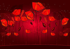 Beautiful poppies background illustration Stock Photography