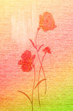 Beautiful poppies on the canvas. Royalty Free Stock Photography
